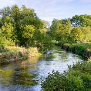 Butler Country Estates lies in the heart of Hampshire just a few minutes from the Rivers Test, Itchen and Meon.